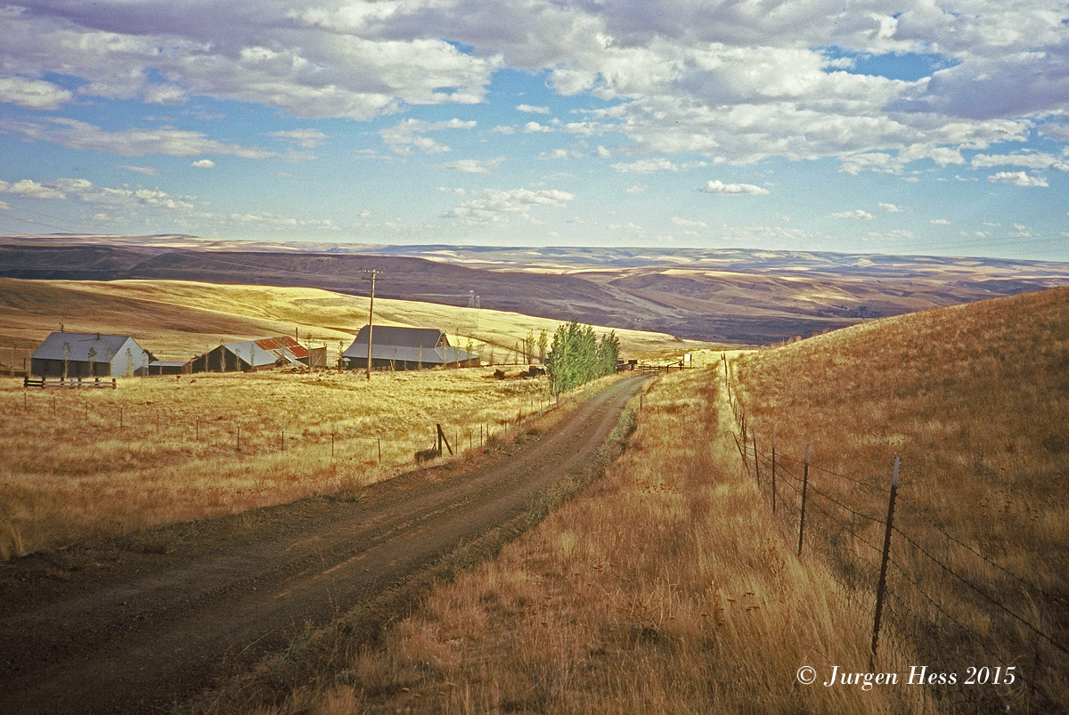 Dalles Mtn Road  9085901
