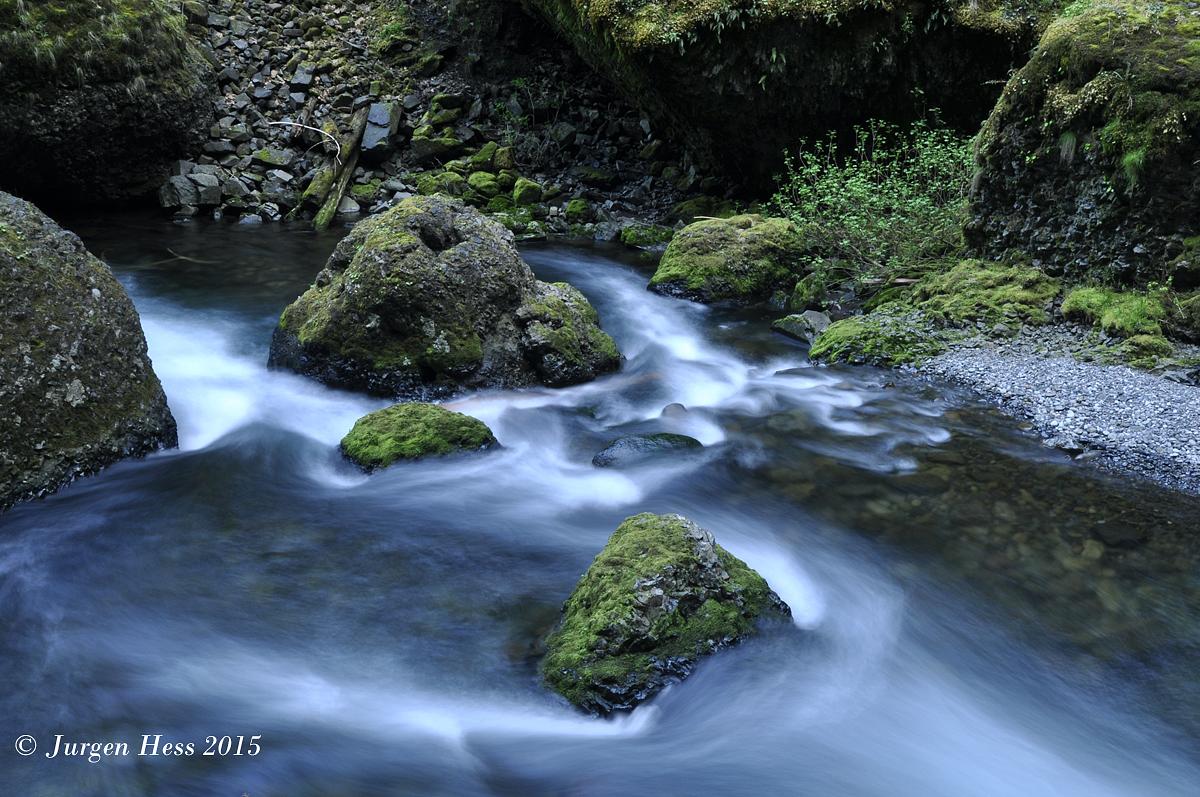 Tanner Creek 0040